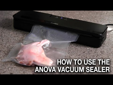 How to Use the Anova Vacuum Sealer + Review